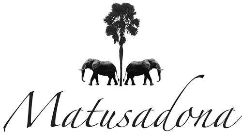 Matusadona-LOGO-Hi-res-1-reduced