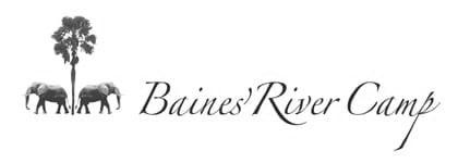 logo-header-baines